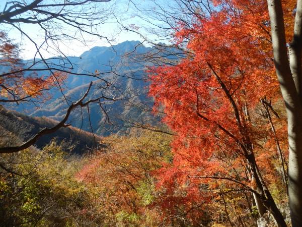 二子山中央稜 002