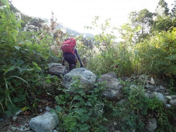 八海山2日目-9 平地の藪に踏み入る