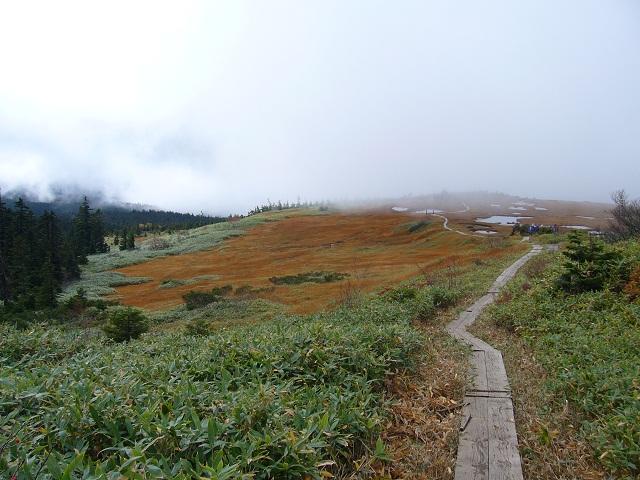 02 霧の中の湿原