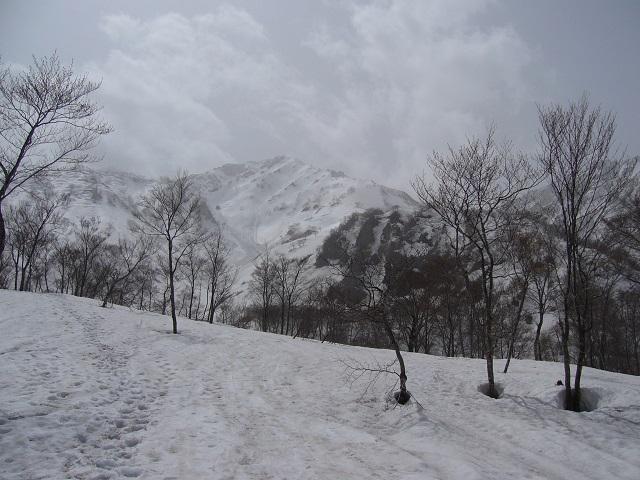 05 杓子岳 (猿倉台地から)