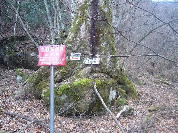 03 千段の滝始まり標識