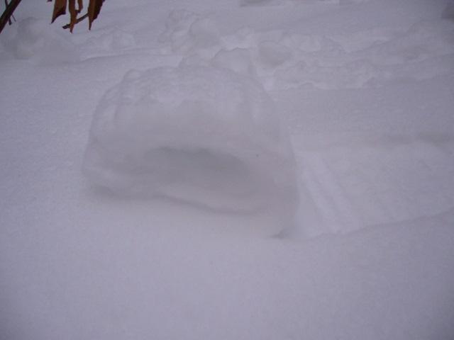 05 雪まくり