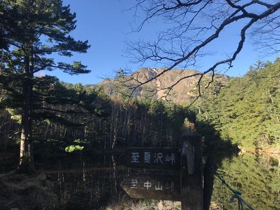 しらびそから稲子岳